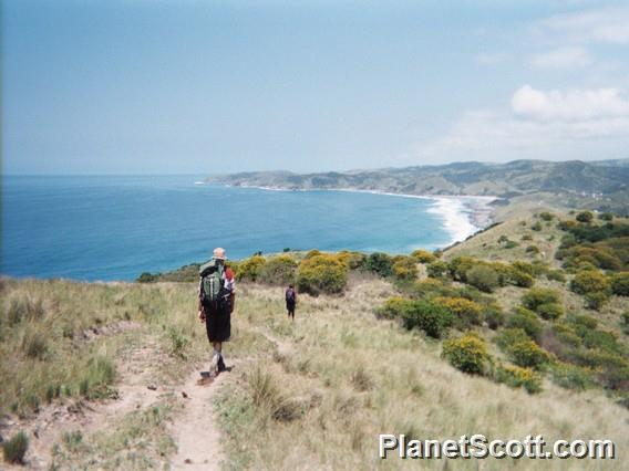 Check Out The Planetscott Trip Reports